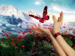 Пословицы и поговорки о счастье, радости, горе