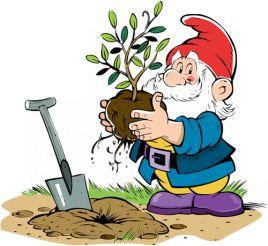 Июнь. Календарь садовода и огородника на июнь