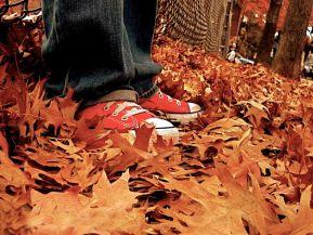 Праздника золотая осень для 6 7 8 класса