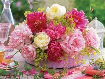 Какие цветы выбрать для посадки на
