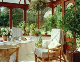 Комнатных растений в доме в квартире